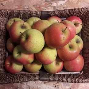 Pomme Rosé du Pilat 1Kg