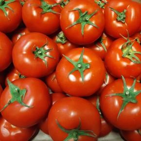 Tomate Ronde (Bio) 500gr
