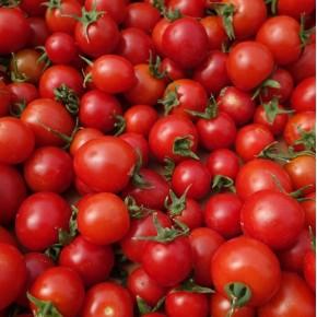 Tomate Cerise (Bio) 250gr