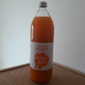 Nectar d'abricot bergeron 1L