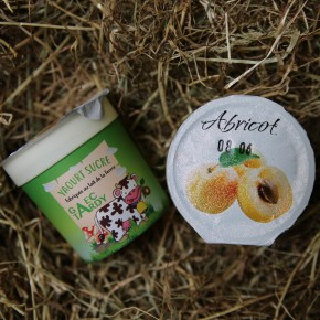 Yaourt fruits abricot