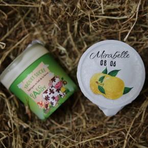 Yaourt fruits mirabelle